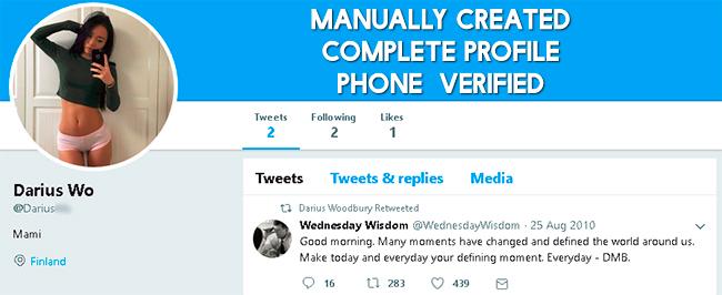 Twitter PVA account